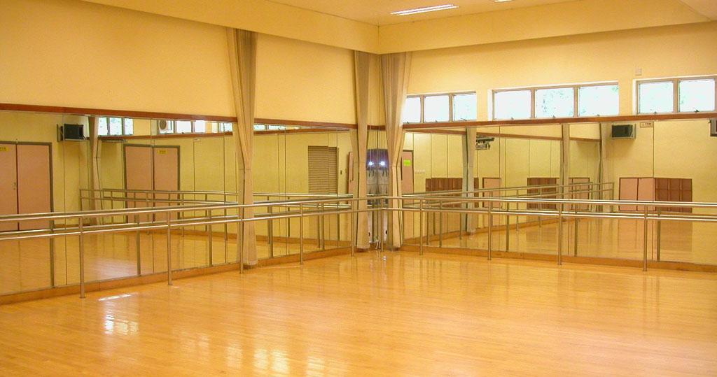舞蹈室商业计划书案例:U&Me舞蹈